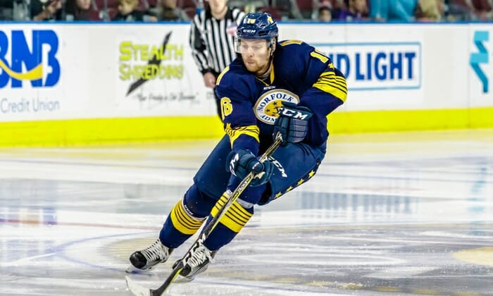 Save on tickets to see the Norfolk Admirals