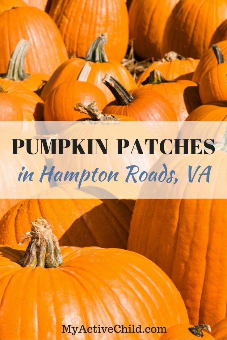 Pumpkin Patches In Hampton Roads Pinterest
