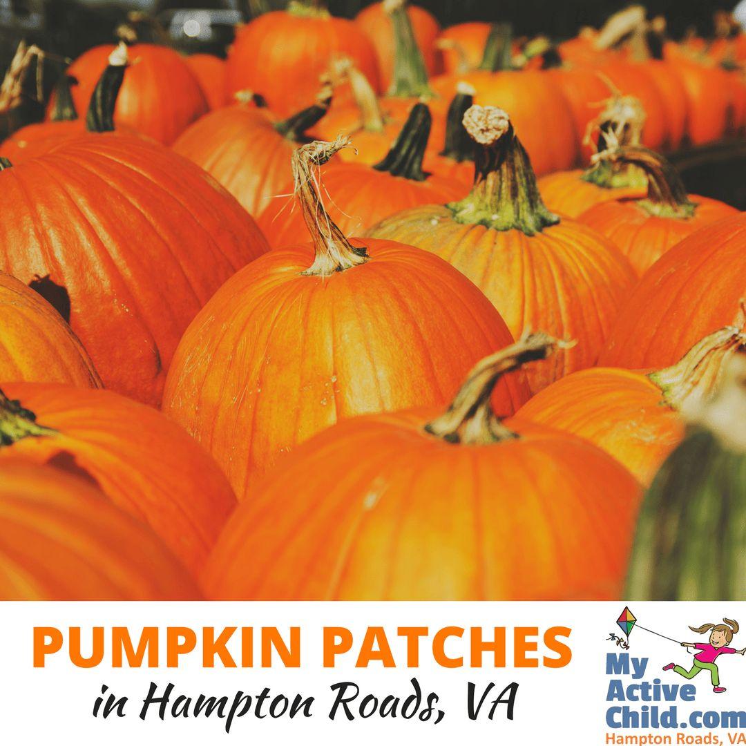 Pumpkin Patches in Hampton Roads VA